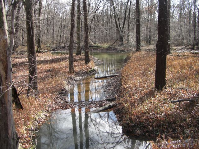 The bigfoot blog this photo was taken the morning after the first snow of the season water is abundant in this region of ohio and near the creeks and rivers you can find fandeluxe Image collections